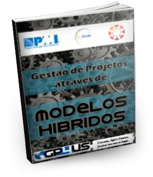 Gestão de Projetos através de Modelos Híbridos